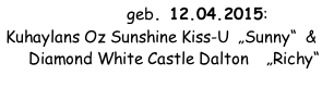 "G-Wurf geb. 12.04.2015: Kuhaylans Oz Sunshine Kiss-U  ""Sunny""  &       Diamond White Castle Dalton    ""Richy"""